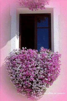Quem não tem vontade de uma janela linda assim?