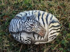 Zebra hand painted rock unique gift by RocksOK on Etsy, $20.00