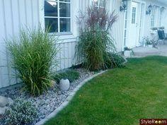 stenlagd kant och gräs