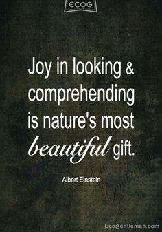 Výsledok vyhľadávania obrázkov pre dopyt joy in looking and comprehending is…