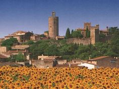 Pals, Catalunya, Spain. Catalunya as it should be. Rural, medieval, twisty streets, lots of steps, golden stone buildings, a cathedral with a stunning view over Baix Emporda, lovely restaurants, fabulous little shops, cats sleeping on windowsills....just gorgeous!