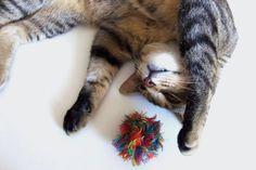 Rainbow Tumbleweed Catnip Ball Cat Toy  Kitten by CurlyGirlCrochet, $7.00