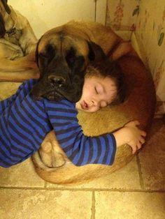 Boy and dog nap together...