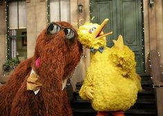 Sesame Street yellow Big Bird, you hear that Snuffy? Someone's talking shit, More Big Bird meme Sesame Street Memes, Comment Memes, Work Memes, Debate Memes, Jim Henson, Mochi, Laugh Out Loud, The Funny, Just In Case