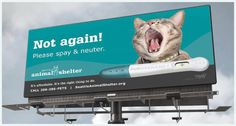 Spay and neuter your pets!