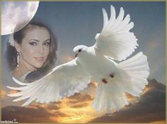 """""""On The Wings Of A Dove"""" frame. Click to add your loved one's photo. May they rest in peace.  Memorial photo montage"""