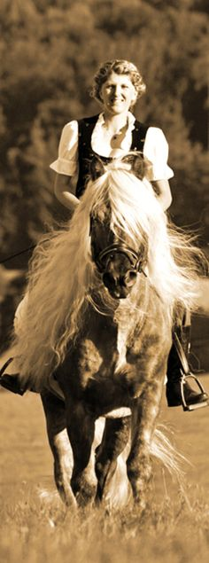 Sandra Luber with self-trained Haflinger, ridden and driven
