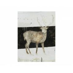 White and Black, Buck Artwork, Deer, Wall Art, Canvas Artwork | Silver Nest