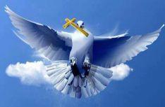 Άγιο Πνεύμα: Τί ειναι, γιατί η βλασφημία του αποτελεί ασυγχώρητο αμάρτημα Kai, Names Of Jesus, Bird, Animals, Google, Amen, Women's Fashion, Funny, Animales