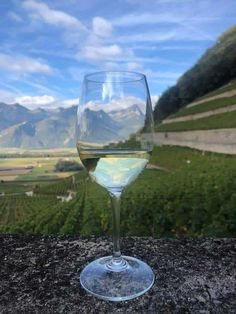 Fine Swiss Wine From Obrist. A quality Swiss wine producer from Vevey with over 160 years experience and know how in producing wines Vevey, Wine Prices, Perfect Christmas Gifts, Zurich, Wine Tasting, Wine Recipes, White Wine, Wines