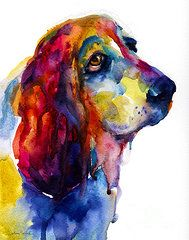 Basset Hound Paintings - Brilliant Basset Hound watercolor painting by Svetlana Novikova
