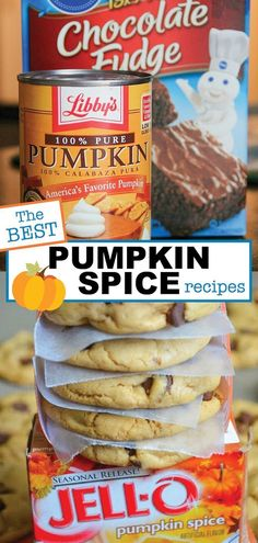 The BEST Pumpkin Spice Recipes Homemade Pumpkin Spice Recipes Pumpkin Recipes, Fall Recipes, Holiday Recipes, Pumpkin Foods, Vegan Pumpkin, Coffee Recipes, Pumpkin Spice Cookies, Pumpkin Spice Latte, Pudding Cookies