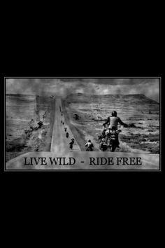 Live wild ride free