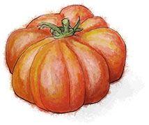 Heirloom Tomato for summer salad recipe