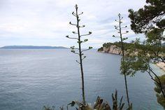 Croatie http://louetswann.blogspot.fr/