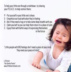 Helping little ones through meltdowns