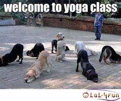How about some Yoga? http://lol-4fun.blogspot.com/ - Montly LoL4fun