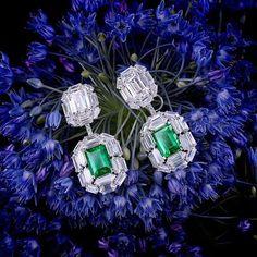 A pair of Colombian emerald and diamond earrings by FORMS #formsjewellery #forms #formations #Istana #Istanajewellers #diamonds #colombianemeralds #oneofakind #diamondearrings #jewellery #finejewellery #hk #fabulous #extraordinary #exquisitejewelry #highjewelry #jewelleryaddict #lovediamonds #dubai #uae #mycity #mydubai #istanadubaimall #fourseasonsdubai