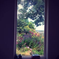 View from the window at Rose Cottage - from McQueGardens.com