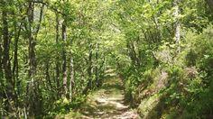 Os nosos montes. Fuontescavadas #Boal #Asturias