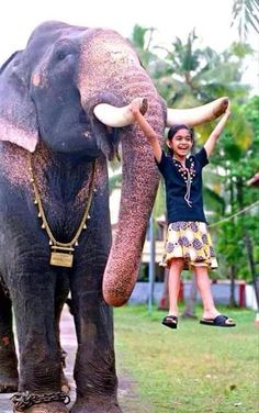 Just a girl playing with her pet elephant (India) Elephant India, Indian Elephant, Elephant Love, Elephant Images, Elephant Photography, Wildlife Photography, Beautiful Creatures, Animals Beautiful, Baby Animals
