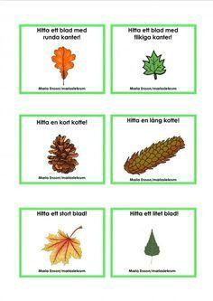 Best Science For Kids Preschool Teachers Ideas Science Activities For Toddlers, Nature Activities, Outdoor Activities For Kids, Preschool Science, Math For Kids, Science For Kids, Preschool Crafts, Preschool Teachers, Kindergarten