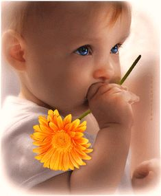 The perfect Baby Flower Eyes Animated GIF for your conversation. Discover and Share the best GIFs on Tenor. Beautiful Children, Beautiful Babies, Beautiful Gif, Beautiful Pictures, Beautiful Things, Coeur Gif, Sending Love And Light, Animation, Gif Pictures
