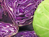 33 zelných receptů: zelí dušené, s masem, ovocem, zeleninou, saláty...