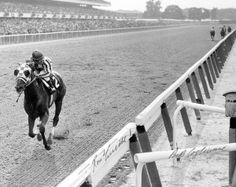 Secretariat running like only he could. Those specks in the background? Those are the other horses.   What a legend. God I love that boy.