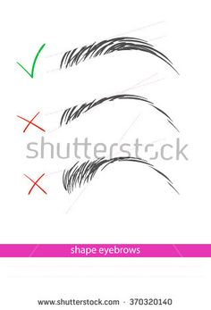 Shaping The Eyebrows - stock vector