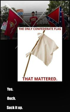 All I see when I see a confederate flag is a poor loser.