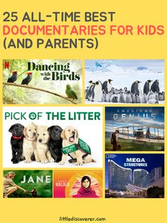 Educational Activities For Kids, Educational Videos, Kids Learning, Movie Night For Kids, Family Movie Night, Kid Movies, Family Movies, Free Learning Websites, The Daughter Movie