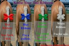 No, Ribbons are not for decoration. Know your tail colors. This tradition started many years ago. Riders place a ribbon in their horse's tail to warn other riders. Red = Stay away, I Kick. Blue = I'm a Stallion. Green = I'm inexperienced & likely to Misbehave. White = I'm for sale.