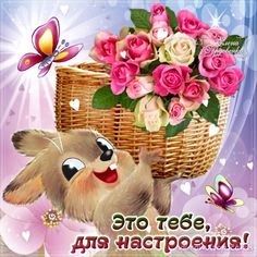 Most popular Picmix [p. 3 on Easter Flowers, Good Morning Gif, Butterfly Art, Love Cards, Positive Thoughts, Pet Birds, Cute Pictures, Birthdays, Creations