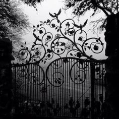 Gate...want this for my property (dream property) that is