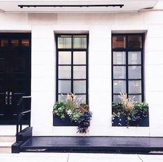 black window frames  + window boxes