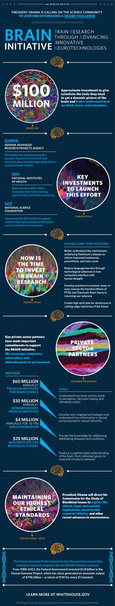 BRAIN initiative infographic from the White House.