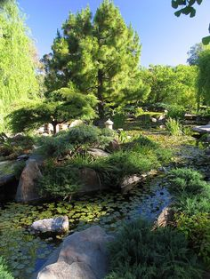 Himeji Garden, Adelaide, Australia | Bill Doyle, Panoramio South Parklands, Adelaide is surrounded by parks on all sides