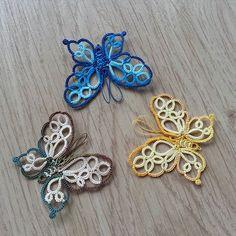 몰포나비 (c)솔솔님 #태팅레이스 #태팅 @solsol_breeze #butterfly #morpho 솔솔님의 첫 유료도안 몰포나비 깔끔한도안, 깜찍한 크기, 완성도도 높아요. 도안구매는 디아미모노로 www.deamimono.com