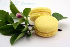 Lemon White Chocolate Macarons - https://www.facebook.com/au.lepetitmacaron
