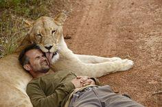 World's Finest Lion Whisperer Kevin Richardson - Save Our Green Kevin Richardson, Lion Love, Cat Love, Beautiful Cats, Animals Beautiful, Animals And Pets, Cute Animals, The Lion Sleeps Tonight, Lion Art