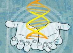Controversial Gene-Editing Approach Gains Ground - Scientific American