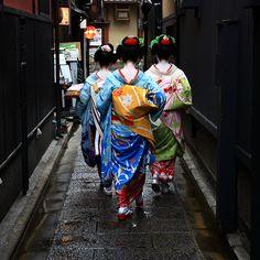 three geishas holding onto their obi. Kyoto, Japan