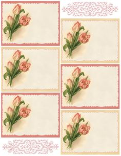 Lilac & Lavender: Pink Tulips ~ Spring is Here! Pink Tulips, Tulips Flowers, Flower Frame, Flower Art, Craft Stick Crafts, Paper Crafts, Scrapbooking Freebies, Card Sentiments, Spring Is Here