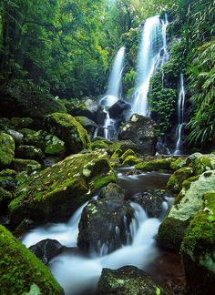 Australia Travel Inspiration - Chalahn Falls, Lamington National Park, Queensland, Australia by Mark Wassell on Brisbane, Melbourne, Perth, Queensland Australia, Australia Travel, South Australia, Beautiful Waterfalls, Beautiful Landscapes, Places Around The World