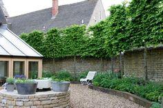 Afbeeldingsresultaat voor pleached hedges