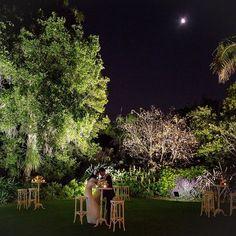 Under the moonlit sky....such a lush oasis at Garden  # royalbotanicgardensvic #whimsical_wedding