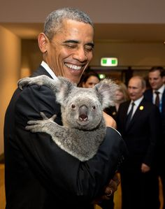 """""""The President holds a koala backstage prior to the G20 Welcome to Country Ceremony at the Brisbane Convention and Exhibition Center in Brisbane, Australia."""" (Official White House Photo by Pete Souza)"""