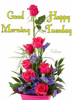 Good Morning Tuesday, Happy Morning, Good Morning Greetings, Happy Tuesday, Happy Day, Prayers For New Baby, Morning Qoutes, Days Of Week, Blue Orchids