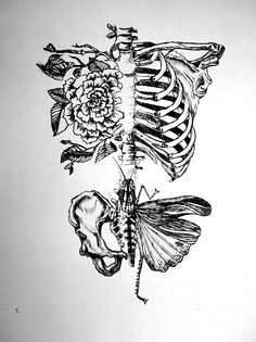 Cool idea of a skeleton/bones